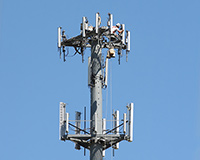 Serving Carrier Wireless Markets with Small Cell Solutions